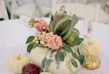 Fall Wedding Ideas / It's my favorite season! View many ideas to have a Fall themed and inspired wedding