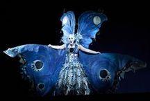 Magic Flute / Opera Job