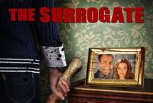 """The Surrogate / DVD Release Date: July 15, 2014 Synopsis: A married couple, struggling to have a child, hires a young woman to be their surrogate, but soon discovers she has a bizarre and deadly agenda. Starring: Cameron Mathison (""""All My Children,"""" """"Dancing with the Stars""""), Annie Wesching (""""24,"""" """"General Hospital"""", Amy Scott (An American Life), Matthew Alan (Walking the Halls, Red Tails), Eve Mauro (Dragon Lore: Curse of the Shadow)"""