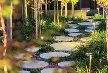 *Kyle's back yard* / putting together ideas to create a wonderland of sensory experiences