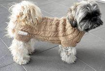 Dog clothes ...+++
