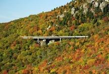 Bridges, Dams, Highways & Tunnels / by Jean Adams