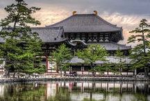 Japan / Turning Japanese / by Mike M.