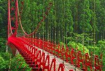 Bridges / - / by Count Orlok