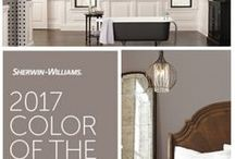 Paint Colors / Trends in paint