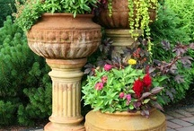 Container gardening / by Donna Anderson