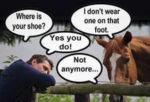 Horse Humour / by Jacqueline Davidson