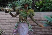 Garden / by Maria Periard