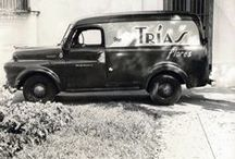 It All Started in Cuba / Trias Flowers was started in Cuba in 1912 by Joaquin Trias Great Grandfather. In 1967 he opened Trias Flowers in Miami and it is currently run by his children Joaquin Trias Jr, Hortensia Trias and Julio Trias.