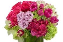Mother's Day in Miami / It's never to early to think about mom's special day. Place your order early for the best selection and timely delivery to recognize mom on her day. Mother's Day is Sunday, May 13th. http://www.triasflowers.com/ocasions/mothers-day-flowers-miami-fl/