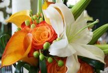 Decorating For Fall! / Some ideas and arrangements for your fall decorating needs!