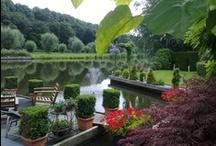 Huis en Tuin / Home and Garden / Aankleding in en om het huis / Decoration in and around our house