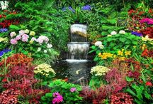 Outdoor Water Features & Ponds / by Diane Miller