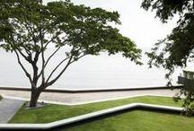 10. (Arch) - Landscape
