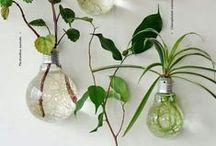 ideas para el nido
