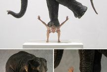 Sculpture / Sculpture, Art, sculptural, wood, marble, stone , contemporary art, human body / by BB TAR