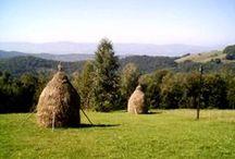 romanian stuff / Iteresting stuff about my country, Romania. Romania is a wonderful place .