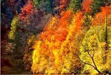 Doğa---Nature