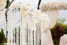 Hawaii Winter Wedding