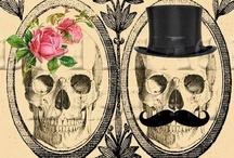 Skulls / by Audrey Darnell