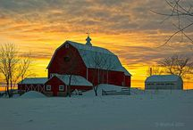 BARNS / by Laurie Hackler