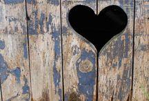 photography - hearts