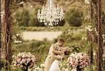 Wedding / Anillo