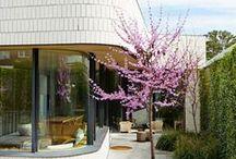 ARCHITECTURE / EXTENSION / CONTEMPORARY DESIGN, RESIDENTIAL DESIGN
