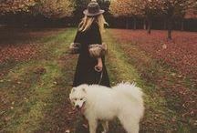 INSTAGRAM / Suzie Mc Adam, instagram feed, #thedesignseeker, interior designer
