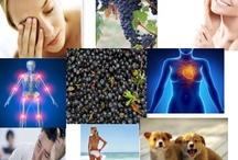 Wellness  / #Wellness and #Health tips, #NaturalHealth #Healing #MindBodySoul #Fitness #WeightLoss #Holistic #Wellbeing #Vitality