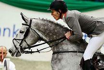 Sport Equestri grande amore / Unico amore amore per i cavalli e il salto ostacoli !