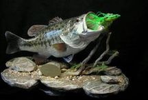 Fish Taxidermy and carvings