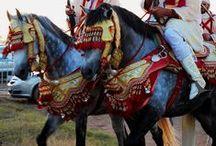 Caballos alrededor del mundo / Dale una vuelta al mundo contemplando caballos de diferentes nacionalidades, ¡desde México hasta Japón!  no te pierdas ninguno de ellos.