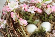 Winkelpresentatie voor Pasen / Clusius College Schagen maakt een collage ter inspiratie voor een winkelpresentatie voor een bloemist.
