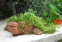 verde, verde, VERDE!!!! / Idee-progetti per il giardino o il terrazzo