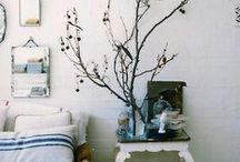 ❍ Plants º Interiors