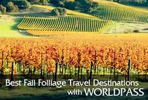 """Best Fall Folliage Travel Destionations / Nothing says """"fall"""" like the blazing red, glimmering gold, and burnt-orange leaves that cover trees and crunch underfoot during the autumn months. Whether you're practically a professional leaf-peeper or just a casual enthusiast, you'll need to know where to take in the season's splendor. Lucky for you, we've scouted out the best fall foliage travel destinations."""
