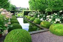 Il giardino che vorrei / gardens