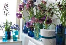 ☼ blauwe/paarse seizoensbloemen / Seasonal joy of flowers #blue going on #purple beauties  Inspired by Pinterest and www.365daysofflowers.com