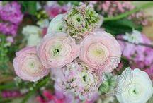 ☼ we <3 spring flowers / The joy of the sping season. With flowers.  Inspired by Pinterest and www.pureseasonalflowers.nl  De blijdschap van het voorjaarsseizoen, met bloemen.  Geinspireerd door Pinterest en www.pureseasonalflowers.nl