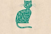 Cats / Gatos, cats, chats