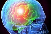 "Mind Body Spirit: Mind / ..the ""mind"" part of the mind-body-spirit connection ♥"