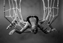 Aerial Acrobatics / Lyra hoop, silks, and trapeze.