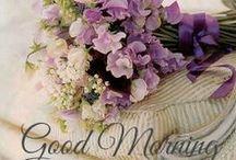 good morning / http://shabbyinlove.blogspot.it