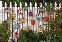 Bird houses in love
