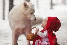 Animal,Puppy,cat,동물 강아지 고양이등 사진모음 / 귀여운 동물사진 / by sun`s pinterest 스카의 소소한 취미공간