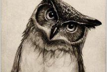 ❃ books owl ❃