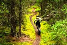 The Bike Mind / All things relevant to bicycle riding, mainly bike trails and mountain biking - MTB