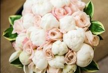 Wedding Floral Ideas / Wedding Floral Ideas / by Scribbled Moments Photography, Inc.
