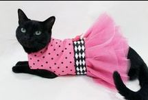 Cool Cat Clothes / Cat cloths and outfits for your feline friends.
